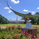 UNCW Chancellor:  Growing numbers of qualified students